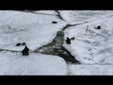 Сахалин: отколовшаяся льдина унесла в море около ста любителей зимней рыбалки