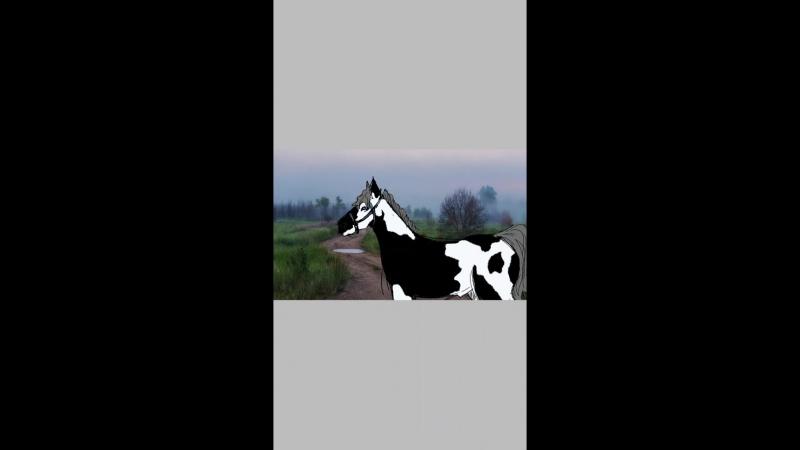 Рисуем Принца|Лошади, Кск Солнечный Край|Недо-Художник|Amino Арты и Фанфики