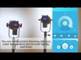 How to control multiple CAME-TV Boltzen lights using the Boltzen LED mobile app