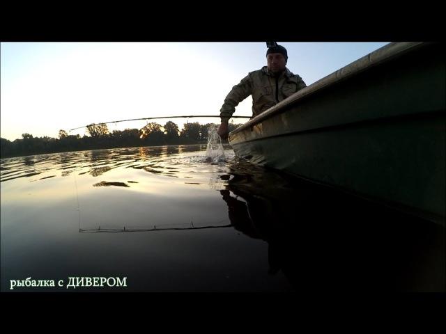 ПЕРМСКИЙ КВОК - сом ловился как из пулемёта. Ловля сома на КВОК - рыбалка 2017. Рыбалка с ДИВЕРОМ.