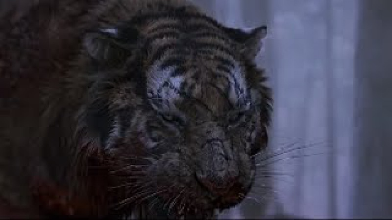 东北虎袭击日本军队Siberian tiger killing the Japanese army -part2