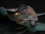BBC_Walking_With_Dinosaurs_Gigantskiy_Kogot_(The.Giant.Claw)
