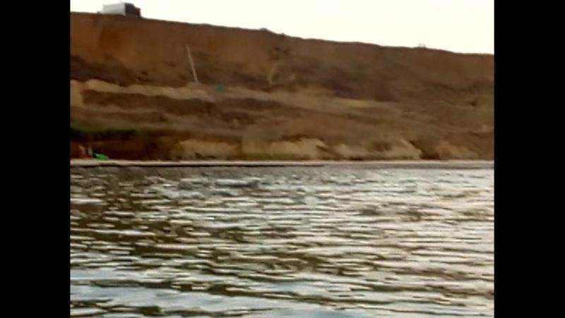 3.Дельфины и люди п.Волна 01.08.2017г