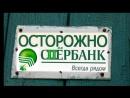 Коррупция кумовство кураторство в Саратовских судах обращение к президенту Российской Федерации