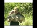 Bezi ribaa