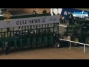 В Дубае на скачках наша лошадь Норд Америка показала прекрасный результат .