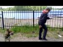 Танцы с Ипатовой и Феликсом 3