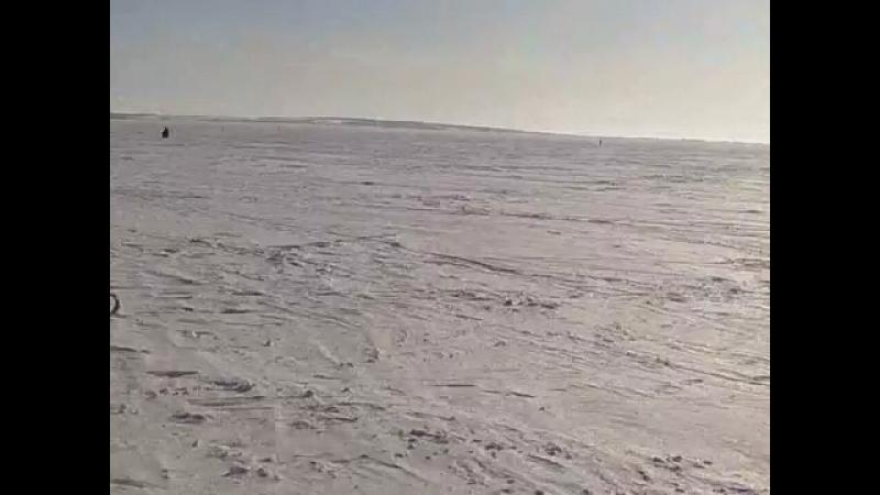 Снегоход уехал без хозяина