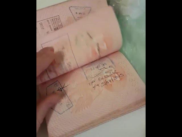 Загран паспорт визы штампы поездки