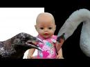 Куклы Пупсики Беби Бон НАСТЯ потерялась в ЗООПАРКЕ Загадки Развивающее видео Funn...