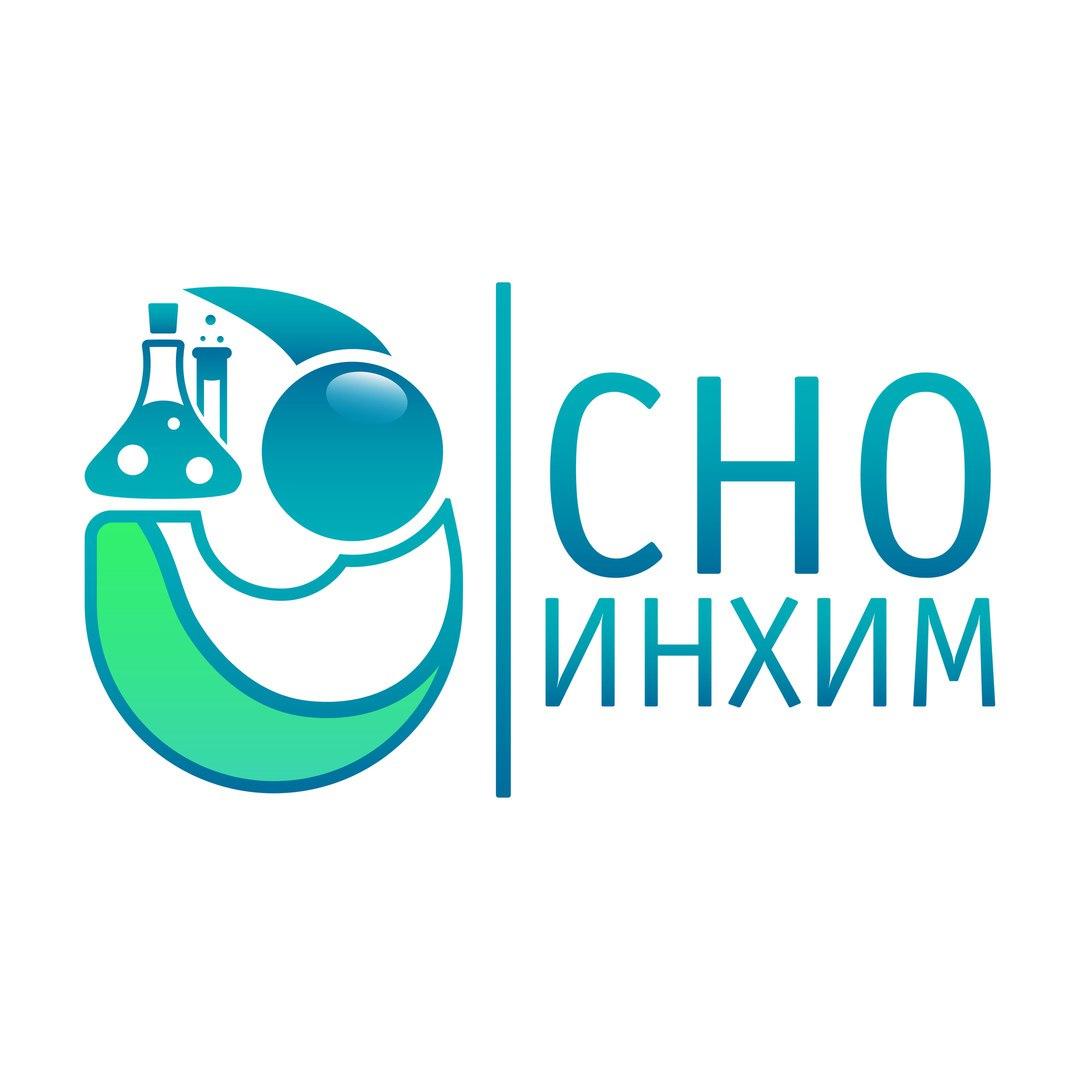 logo СНО ИнХим
