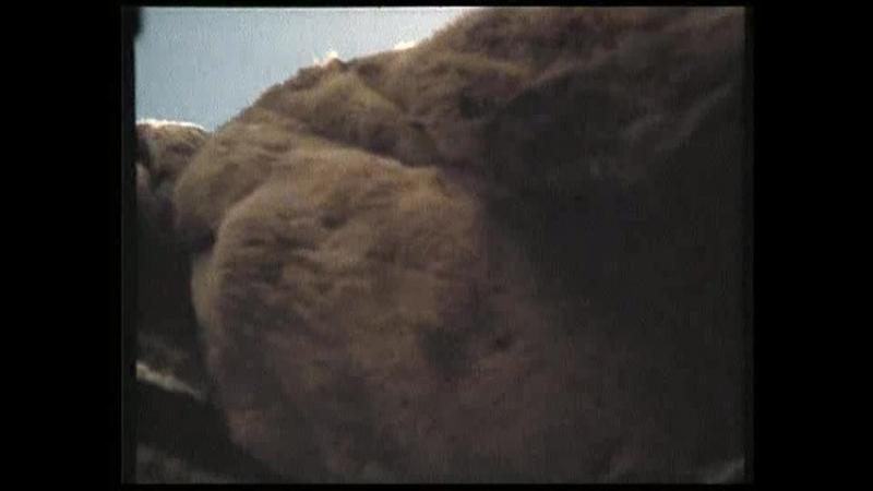 Сон в начале тумана.1994.(Россия. фильм-исторический, драма, экранизация)