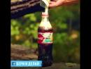 15 безумных экспериментов с кока-колой бонус. 😉
