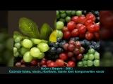 Qurani-Kərimdə adı keçən meyvələr