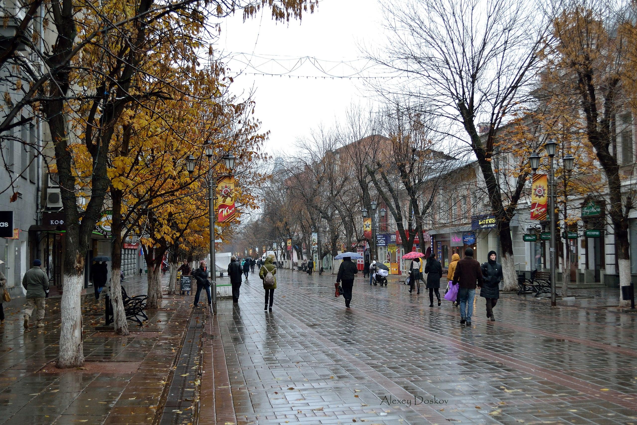 Прогулка по ноябрьским воспоминаниям - 2015 год