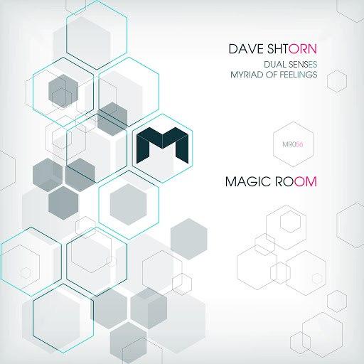 Dave Shtorn альбом Dual Senses