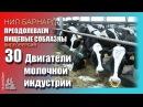 30.Двигатели молочной индустрии Преодолеваем пищевые соблазны