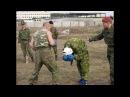 Краповый берет . Легковес против Годзиллы the maroon beret . Lightweight vs Godzilla