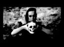 Da-Sein ☆ Evils (Official Music Video)