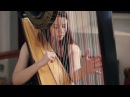 J.S. Bach - Toccata and Fugue in D Minor BWV 565 Amy Turk, Harp