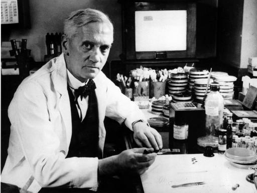 Александр Флеминг - изобретатель антибиотиков