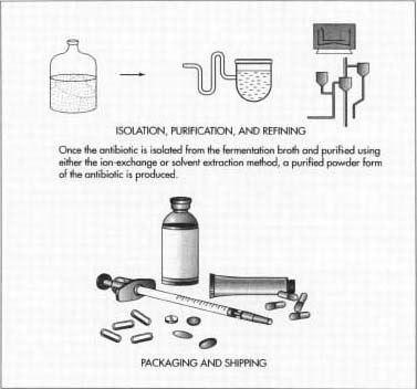 Получение антибиотика