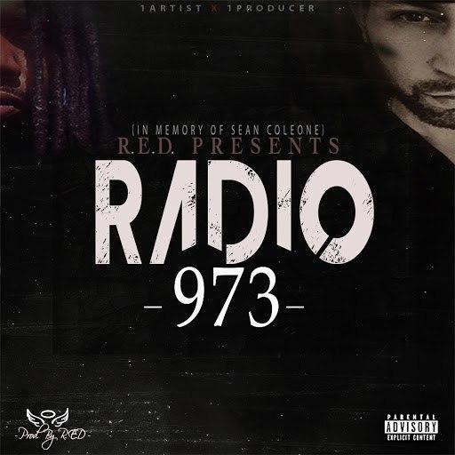 Radio альбом 973