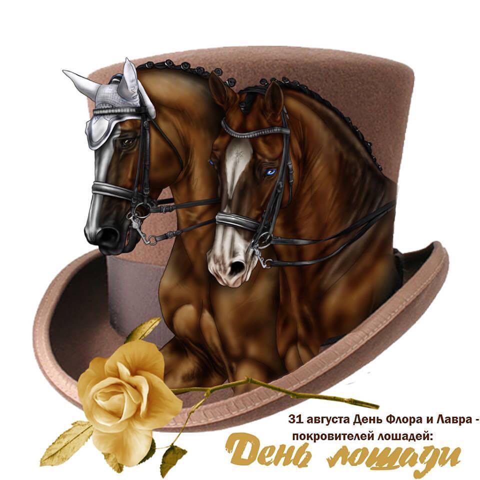 День лошади 31 августа открытки, днем рождения мужчине