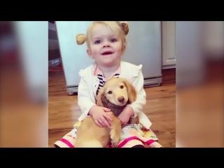 Подборка детей и животных
