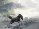 Сергей Маховиков-Там белые, белые кони