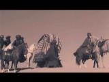 La Bionda - The Video Hits Collection.