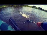 За Щукой в Августе! Ловля Щуки на Спиннинг   Рыбалка на Щуку с Лодки.
