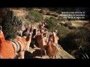 Qhapaq Ñan: Los Caminos del Inca