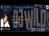 Dj Wild - мировые диджеи электронной музыки
