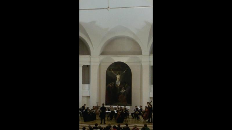 НОВОГОДНИЙ ШТРАУС-ГАЛА. Лютеранская церковь Святых Петра и Павла Петрикирхе