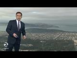 Ворона вмешалась в телевыпуск прогноза погоды