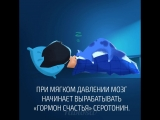 Чем тяжелее одеяло, тем быстрее ты уснешь.