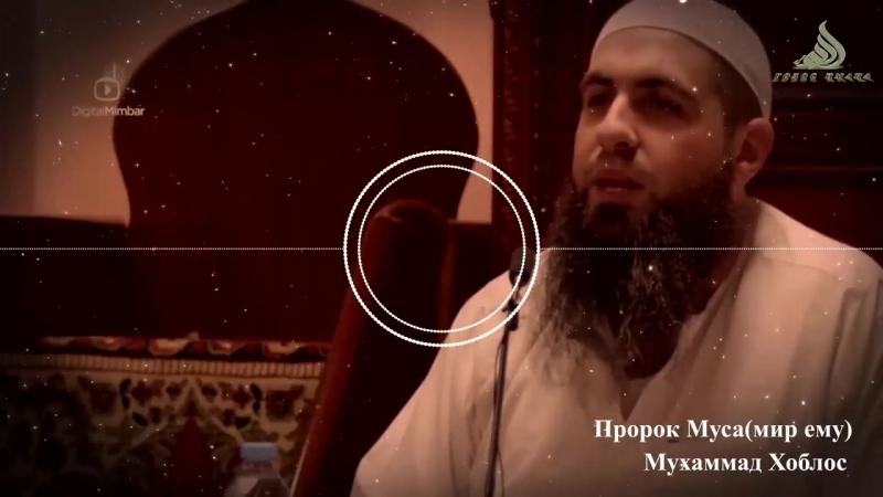 Пророк Муса, мир ему ┇ В народе случилась засуха ┇ Мухаммад Хоблос HD