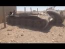 Сирия.22-06-2017.Уничтоженная-трофейная техника ИГ захваченная сирийской армией в районе города Русафа,провинция Ракка