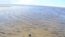 Прогулка по берегу Белого моря