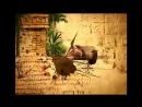 Заставка программы Жестокие игры (Первый канал, 07.03.2010-07.07.2012)