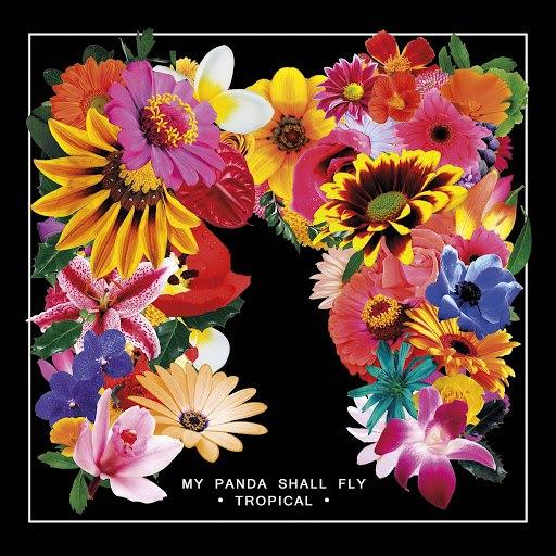 My Panda Shall Fly альбом Tropical