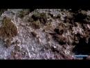 Вершина мира Килиманджаро Документальный фильм