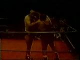 NWA Amarillo (...11.1978)