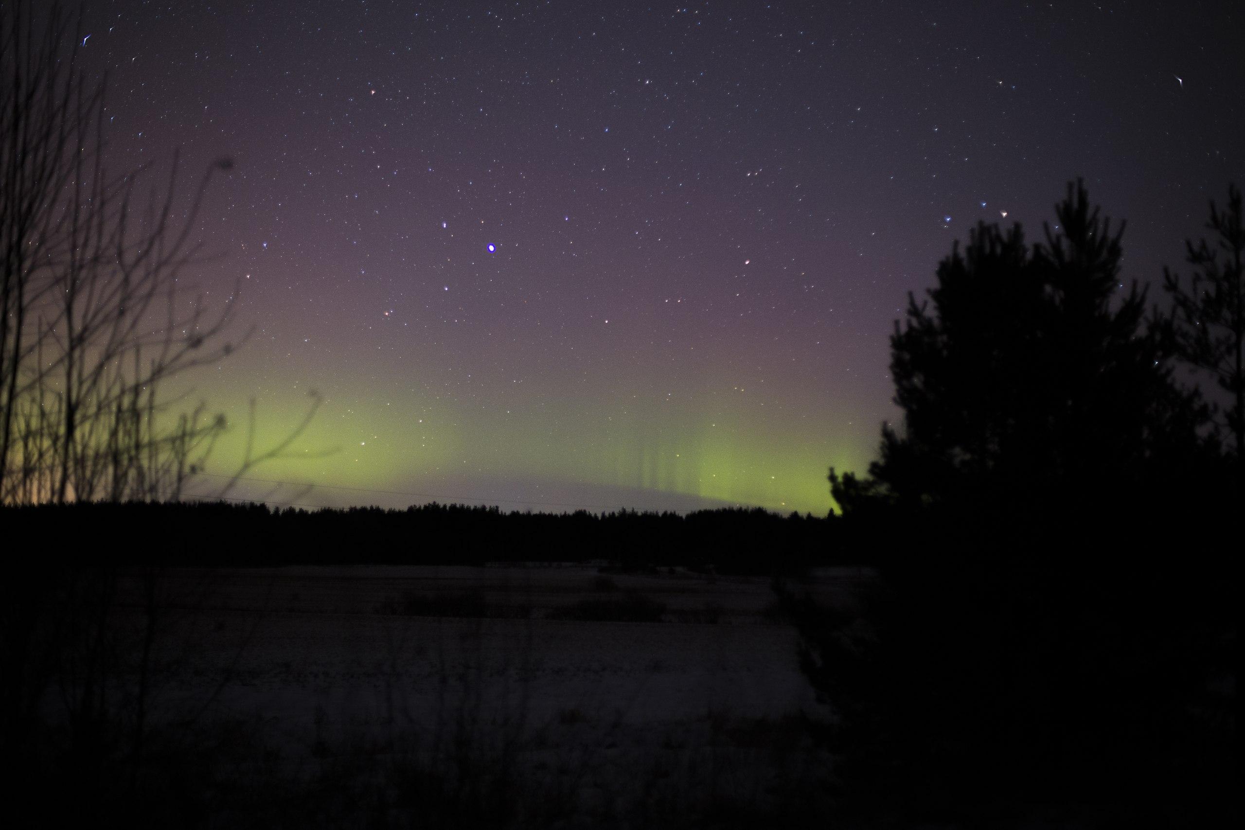 Ночью вЛенобласти наблюдали северное сияние