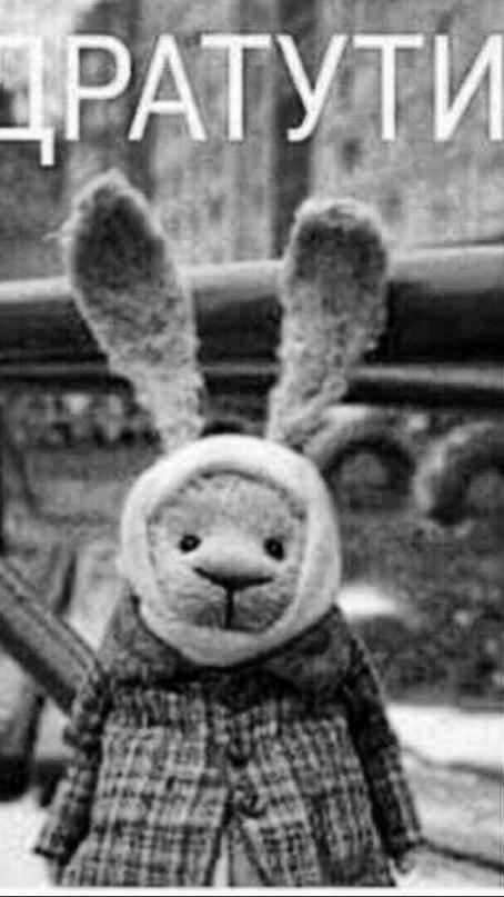 Картинка дратути заяц