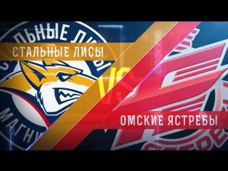 LIVE! «Стальные Лисы» - «Омские Ястребы» (14.12 – 15:00)