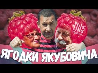 This is репортаж: Ягодки Якубовича