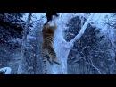 Захват горы тигра, боевик, драма, Китай, 2014