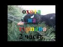 часть 2 Охота на турпана в Якутии hunting for ducks in Yakutia